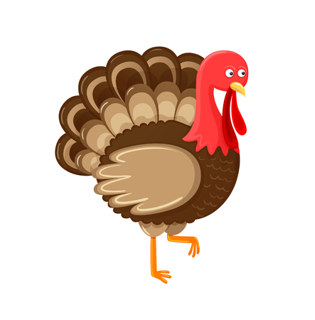 Bird symbol of thanksgiving day isolated icon vector. Animal with feathers sign of autumn fall American holiday. Unprepared meat, standing poultry Illustration