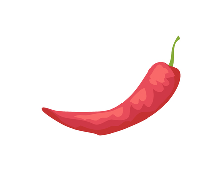 Pepper raw spicy vegetable isolated icon vector. Chilli chile veggie with piquant taste used as flavour in dishes. Ingredient of meals made of meat Illustration