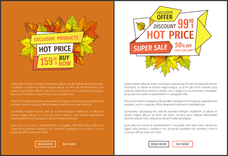 Hot price exclusive products buy now at super hot offer 159.90 promo posters with oak and maple leaves, text. Autumn season discounts Thanksgiving vector