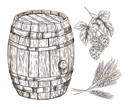 Raw set for beer reproduction with wooden barrel isolated on white backdrop graphic art, vector illustration of hop and wheat branches, oak container Archivio Fotografico - 127116162
