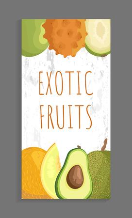 Ambarella and kiwano, papaya and melon, avocado and jackfruit whole and cut tropical fruits on vector leaflet. Exotic ripe veggies isolated on banner Illustration
