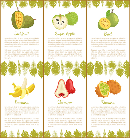 Jackfruit Sugar Apple, Bael Banana Champoo Posters