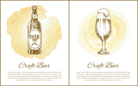 Botted and draught beer with high foam hand drawn vector illustration in color plush. Sketch style depiction of brewery, poster with text sample. Stock Vector - 113462940