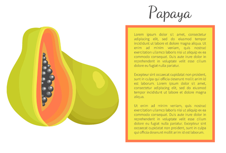 Papaya exotic fruit whole and cut vector poster Papaw or pawpaw Carica plant. Tropical food, similar in appearance tor pear, dieting vegetarian grocery