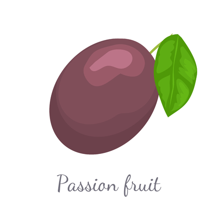 Passionfruit with Leaf, Exotic Juicy Fruit Vector