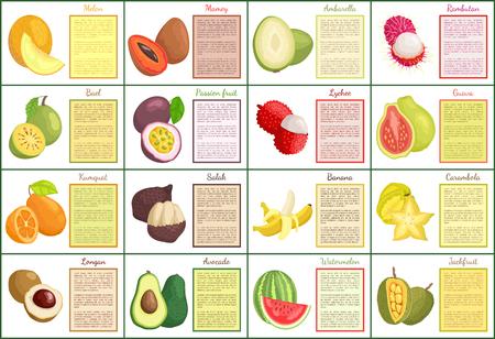 Melon and mamey posters set vector. Papaya and kumquat, carambola and longan, avocado and watermelon. Ambarella and lychee, bael pitaya exotic food Stock Vector - 127087736