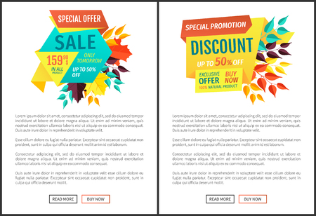 Sale offer special discount exclusive proposition. Seasonal sale sellout and super clearance. Big deal autumn clearance poster with text sample vector