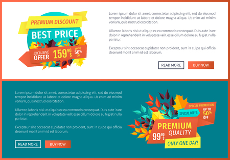 Premium discount best price posters set with banners and text. Autumn leaves decoration only one day exclusive products quality goods offer vector Zdjęcie Seryjne - 127087750