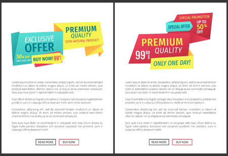 Exclusive offer and premium quality commercial phrases labels on landing page. Segments with advert banners, text sample read more or buy now buttons. Illustration