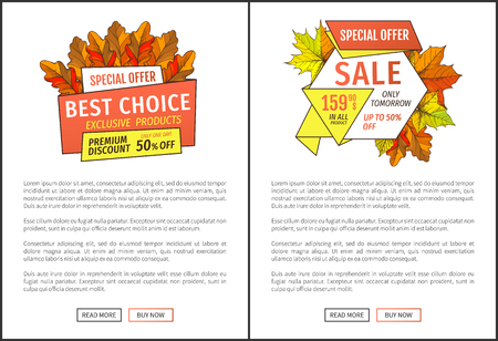 Special exclusive offer buy now poster with oak leaves. Vector autumn sale banner, yellow foliage. Best choice special promo discount on Thanksgiving day