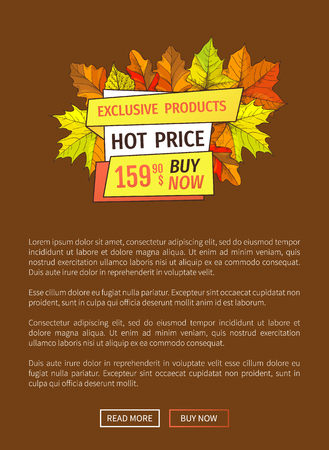 Exclusive Fall Products Buy Now Super Price Poster