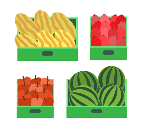 Watermelon and melon fruits in container isolated set vector. Healthy food, nutritious products. Organic vitamins dieting for vegetarians beetroot