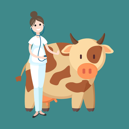 Veterinarian cow livestock carrying woman at work vector. Medical worker wearing stethoscope listening to animal heartbeat. Mammal treatment
