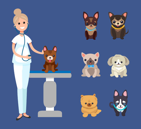 Veterinarian Service, Pets Clinic with Dogs Breeds Stockfoto