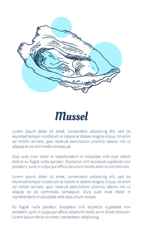 Mussel Marine Creature Hand Drawn Poster with Text