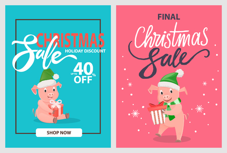 Final Christmas sale pigs and piglets in winter hats with gift boxes in frames on blue and pink, vector. 40 percent off, holiday discounts posters, shop now