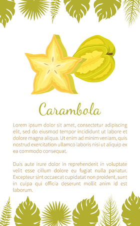 Carambola or Starfruit Exotic Fruit Vector Poster