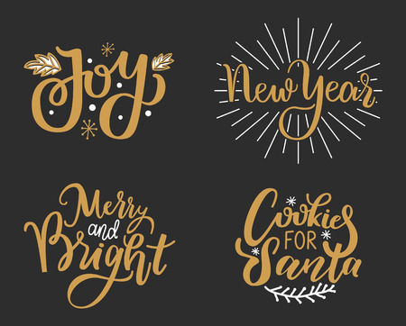 Joys, New Year, Merry and Bright Cookies for Santa
