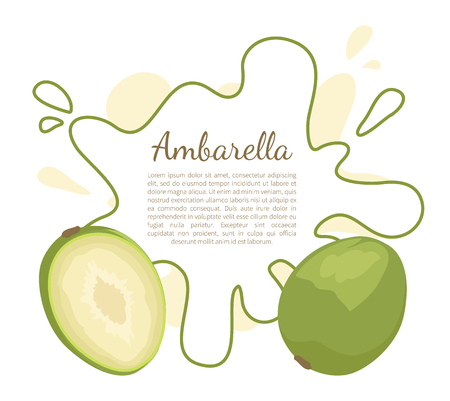 Ambarella exotic juicy fruit vector poster frame and text. Tropical edible food, dieting vegetarian banner. Spondias dulcis or June plum, kedondong