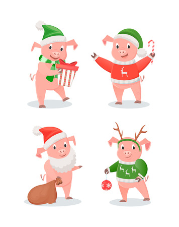 New Year 2019 Piglets in Hats and Sweaters Set Illustration