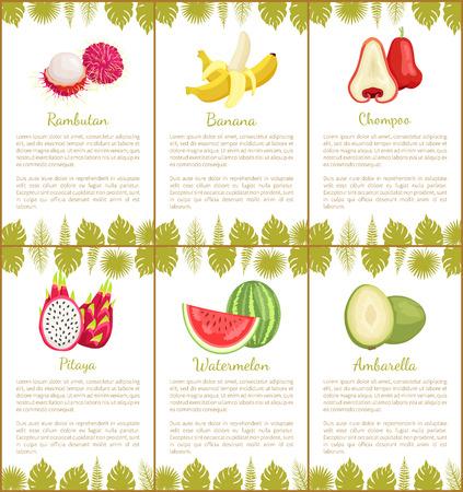 Rambutan and banana, chompoo and pitaya, watermalon and ambarella tropical posters set with exotic fruits and leaves vector illustration with text sample