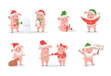 Pigs in Hats and Sweaters, New Year and Christmas