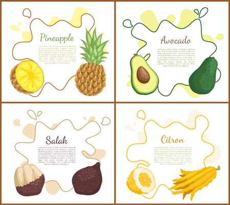 Pineapple and avocado set of posters with text. Salak and yellow ripe citron, tropical products and desserts. Healthy meal, fresh food eating vector