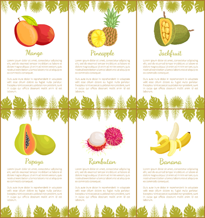 Mango and Pineapple and Banana Posters Vector Foto de archivo - 113721147
