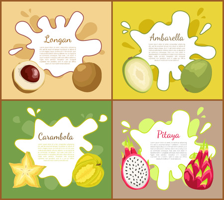 Longan and carambola, pitaya and ambarella slice of lush exotic products. Posters set with text sample and summer organic tropical fruits vector