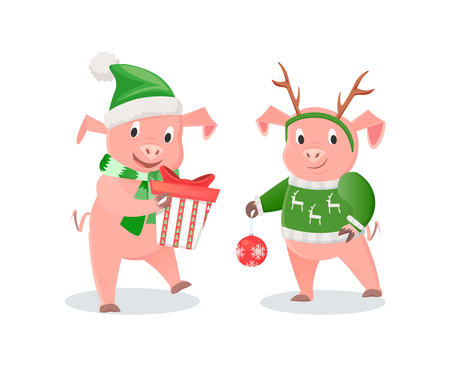 New Year Piglets in Knitwear, Gift Box and Ball