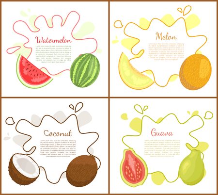 Watermelon and melon, posters with text sample. Fresh exotic natural products, tropical fruits. Coconut and papaya slice healthy organic food vector 版權商用圖片 - 126844619