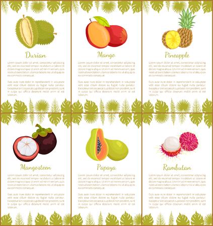 Pineapple Tropical Plant Edible Fruit Posters Text Standard-Bild - 113901969