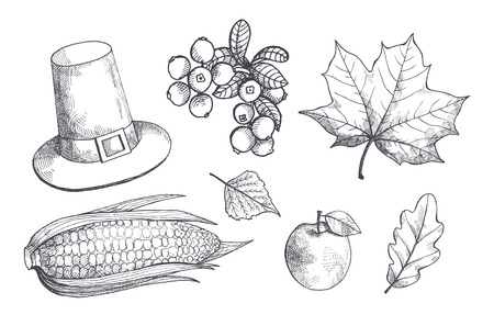 Maple leaves and corn, maize with seeds monochrome sketches outline set vector. Hat with belt, apple fruit and cranberry, berries and healthy meal