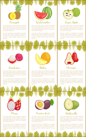 Pineapple and watermelon, sugar apple and rambutan, melon and chompoo, pitaya and passion fruit, ambarella tropical exotic food posters with text sample