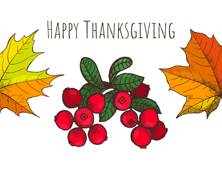 Happy Thanksgiving Day Cranberry Poster Vector Illustration