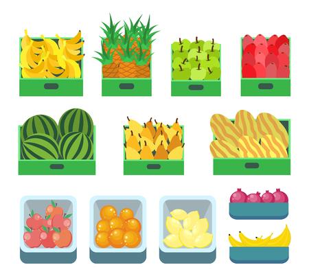 Negozio di frutta, contenitori con vettore di prodotti dolci. Ananas e banane frutti tropicali, mele e pere, cocomero melone. Agrumi e melograno