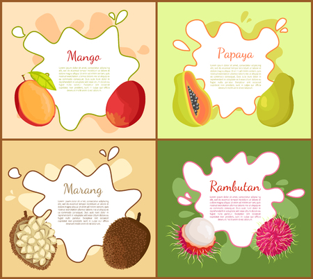 Mango and Papaya Posters Set Vector illustration