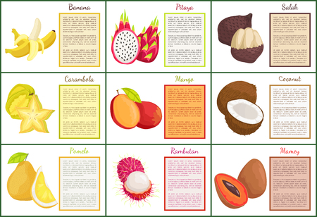 Coconut and Banana Carambola Posters Set Vector Illustration