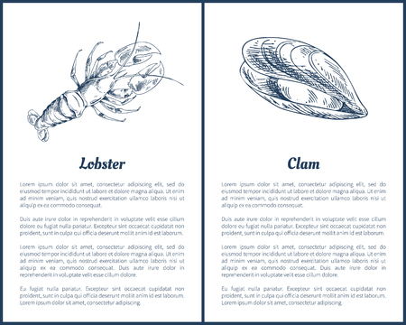 Lobster and Clam Posters Set Vector Illustration