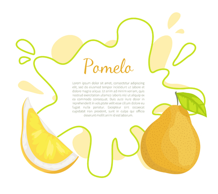 Pomelo exotic fruit vector poster with frame and place for text. Tropical food, similar to grapefruit or pear, dieting vegetarian citrus with leaf