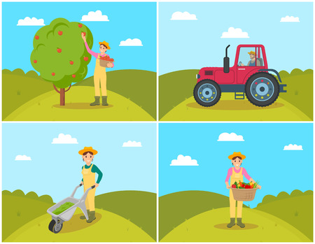 Farmer gathering apples set. Tractor on field agricultural machinery in use. Compost cart and wicker basket with vegetables, tomatoes and peppers vector