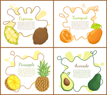 Cupuacu and kumquat, avocado and pineapple posters set with text sample. Nourishing organic products tropical fruit, exotic meal with vitamins vector