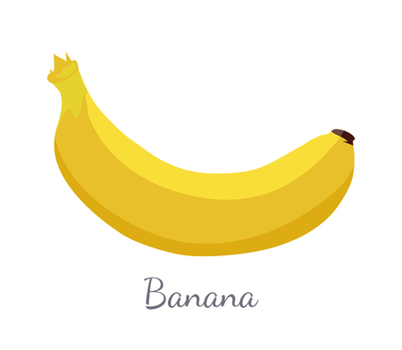 Banana exotic juicy ripe yellow fruit, botanically a berry, vector isolated. Tropical edible food, dieting vegetarian icon full of vitamins, sweet dessert Standard-Bild - 126251039