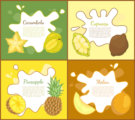 Carambola and cupuacu, posters set with information text sample. Pineapple and melon slices. Tropical and exotic ripe fruits. Ripe products vector