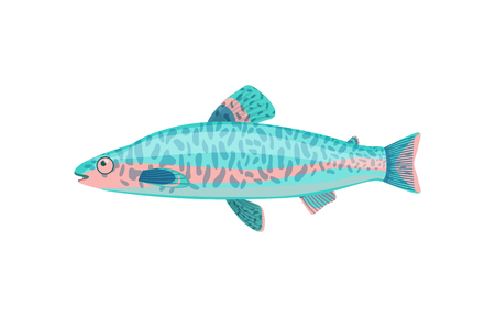 Jack dempsey fish closeup. Limbless cold-blooded vertebrate animal with gills and fins. Colorful tropical biological organism vector illustration