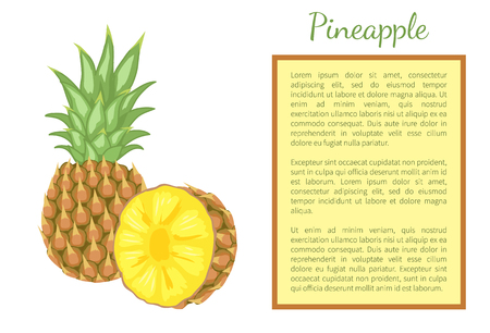 Pineapple tropical plant edible multiple fruit whole and cut vector isolated. Tropical food, dieting vegetarian exotic item with vitamins, common ananas Ilustração