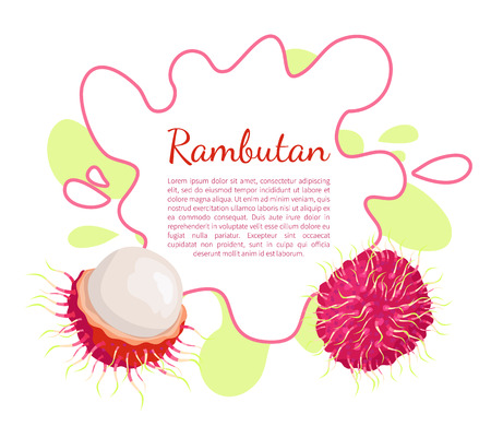 Rambutan exotic juicy stone fruit vector poster frame and text. Dieting vegetarian icon, related to edible tropical fruits lychee, longan, and mamoncillo Standard-Bild - 126168706