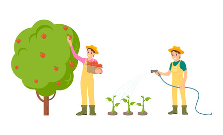 Farmer woman with basket isolated icons set vector. Food plantation vegetables and fruits, watering plants. Gardening and harvesting summer season