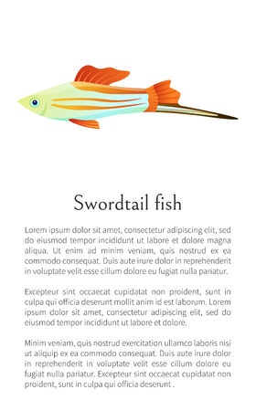 Colorful male swordtail fish isolated on white graphic. Freshwater aquarium fish icon on blank background, in cartoon style, vector illustration Ilustração