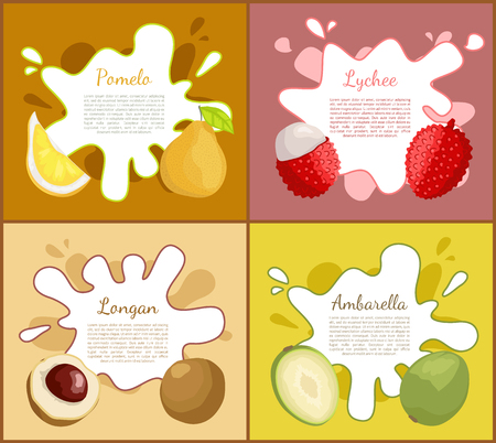 Pomelo and lychee, slice of longan and ambarella tropical product. Exotic fruits set of posters and ripe meal full of vitamins and freshness vector